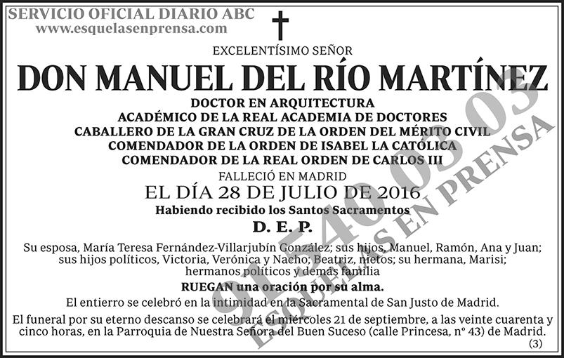 Manuel del Río Martínez